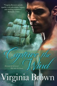 Cover Art: Capture the Wind