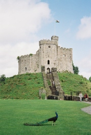 Norman Keep of Cardiff