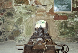 One of the guns